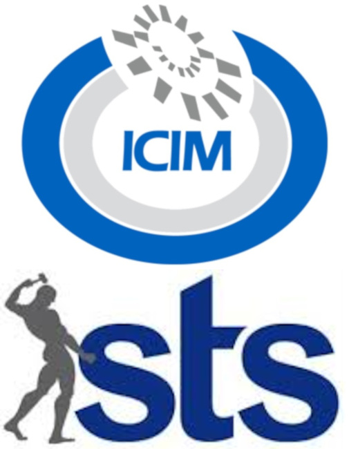ICIM + sts